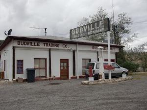 Budville Dude