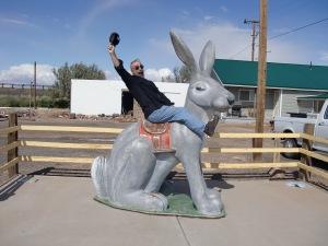 Hoopty Hare