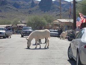 11-25 Donkey
