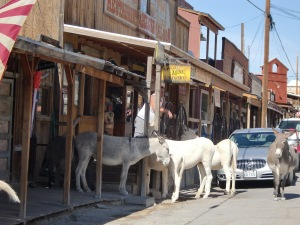 Oatman Commute